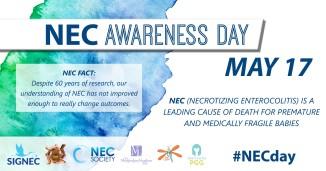 NEC FACT 1