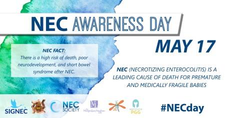 NEC FACT 2